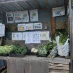 キラ星農園